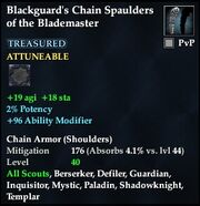 Blackguard's Chain Spaulders of the Blademaster