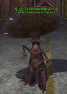 A Serilian believer (fungusman)