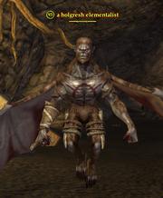 A holgresh elementalist
