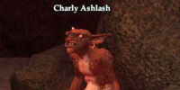 Charly Ashlash