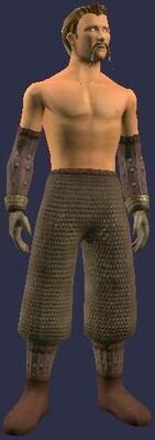 Woven Vulcanized (Armor Set) (Visible, Male)