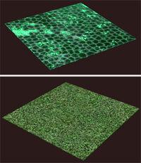 Brewday-tile-examples.jpg