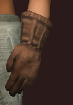 Earthkeeper's Gloves (Equipped)