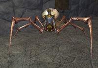 Grim Sorcerer V (Master)