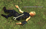 A wounded Baubbleshire defender