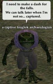 Captive froglok archaeologian