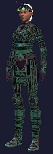 Rift Guardian Half Elf (female)