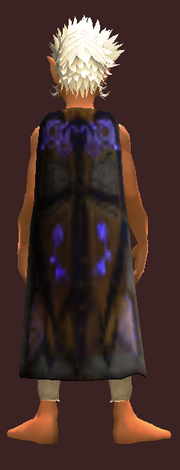 Encompassed Fame Cloak (Equipped)