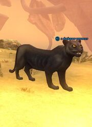 A darkpaw pouncer