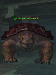A dragonbane terrapin