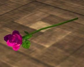 File:Single Pink Rose (Visible).jpg
