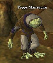Poppy Marrsquire