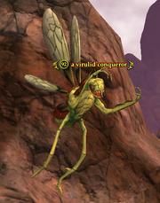 A virulid conqueror