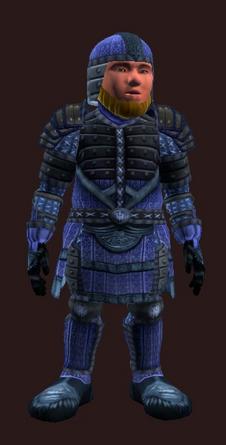 Stormbringer's Resplendent (Armor Set)