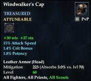 Windwalker's Cap