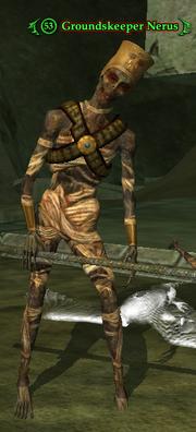 Groundskeeper Nerus