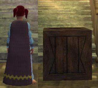 File:Cloak of Disguise2.jpg