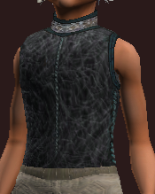 Feral Rainkeeper's Tunic (Equipped)