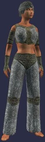 File:Wu's Fighting Gear (Armor Set) (Visible, Female).jpg