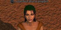 A parched desert prophet