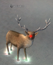 A reindeer (Cheriweth's Confectory)