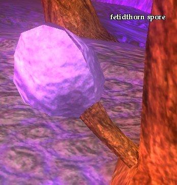 File:Fetidthorn spore.jpg