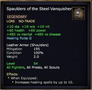 Spaulders of the Steel Vanquisher