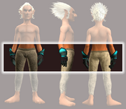 Frostwind Champion's Gauntlets (Equipped)