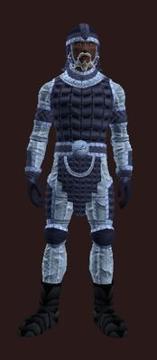 Steppes bear (Armor Set) (Visible, Male)