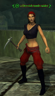 A Dervish tomb raider