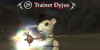 Trainer Dyjus
