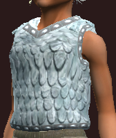 Oracle's Hauberk of Acumen (Equipped)