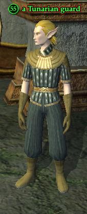 A Tunarian guard