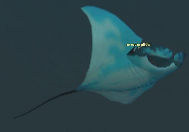 File:Ocean glider.jpg