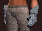 Righteous Augur's Plate Gloves (Equipped)