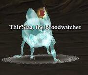Thir'Slaa, the Broodwatcher