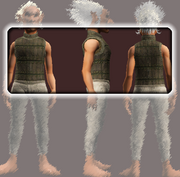 Wanderer's Tunic (Equipped)