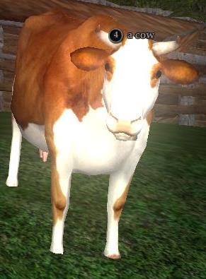 File:Cow (Antonica).jpg
