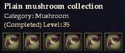 CQ mushroom plain Journal