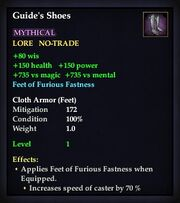 Guide's Shoes