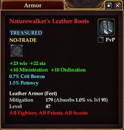 Naturewalker's Leather Boots