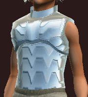 Polished parade cuirass (Equipped)