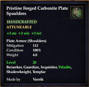 Carbonite Plate Spaulders