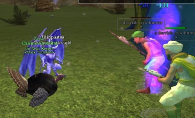 File:Turkey in a fight 3.jpg