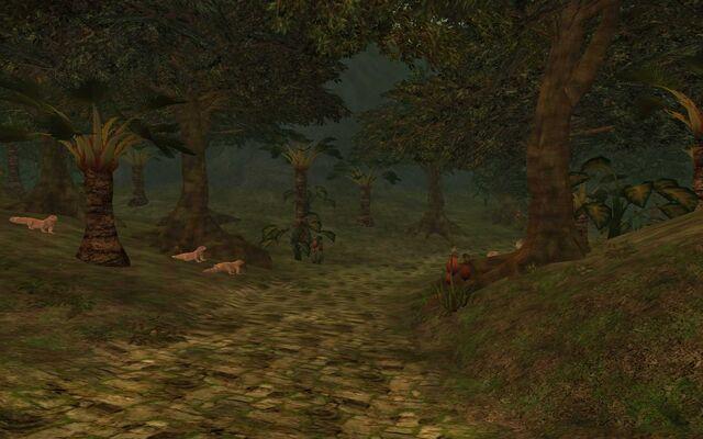 File:The Jungle of Alliz Evol.jpg