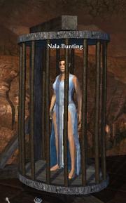 Nala Bunting
