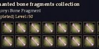 Enchanted bone fragments collection