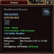 Fleshbound Bracers