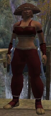 File:Adept Blood Hide Armor Set.jpg