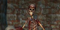 The Crimson Butcher